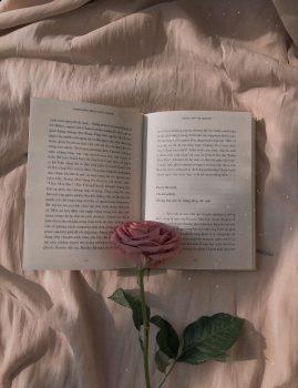 本、出します
